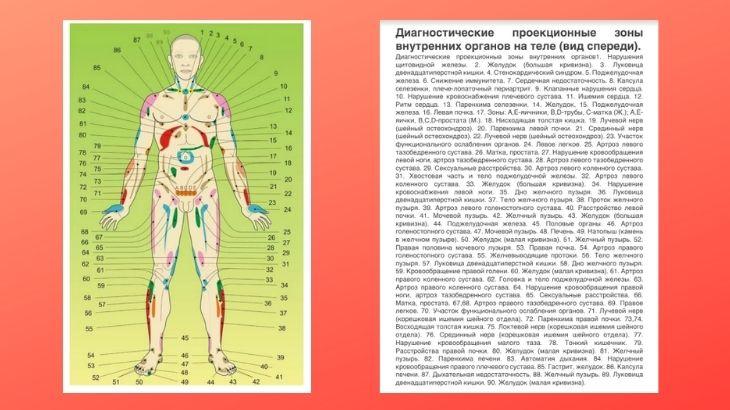 Атлас проекционных зон Огулова А.Т.