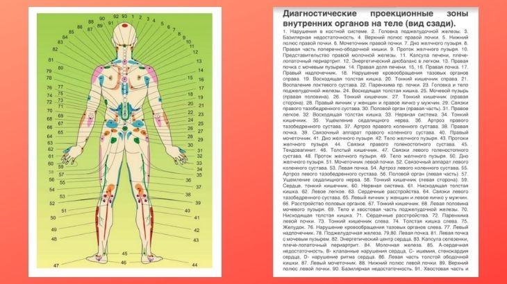 Атлас проекционных зон по Огулову А.Т.