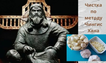 Чистка организма по методу Чингисхана