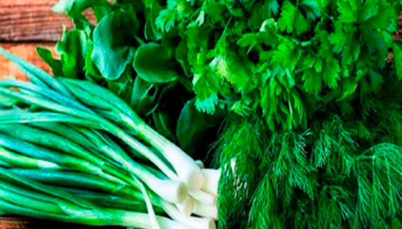 12 способов сохранить свежими зелень и пряные травы