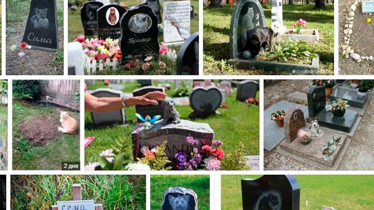 Могилы домашних животных