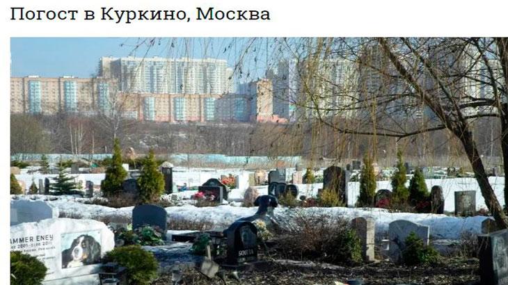Кладбище домашних животных в Куркино -Москва.